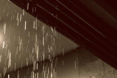 雨音がする